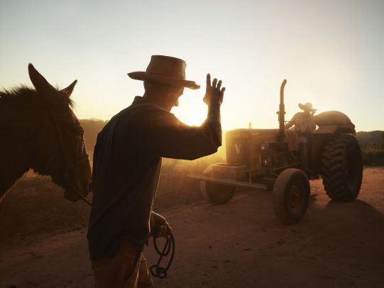 Man holding a horse says hi to another on a tractor for Lavazza Calendar 2016 by Joey L