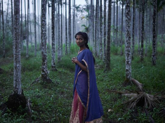 indian girl in the forest at dusk