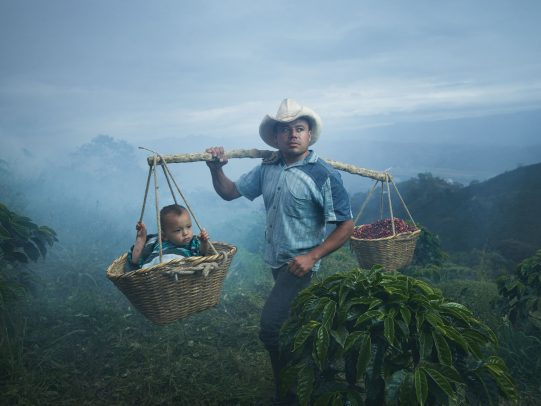 man holding two baskets with his son in one in a plantation for Lavazza Calendar 2016 by Joey L