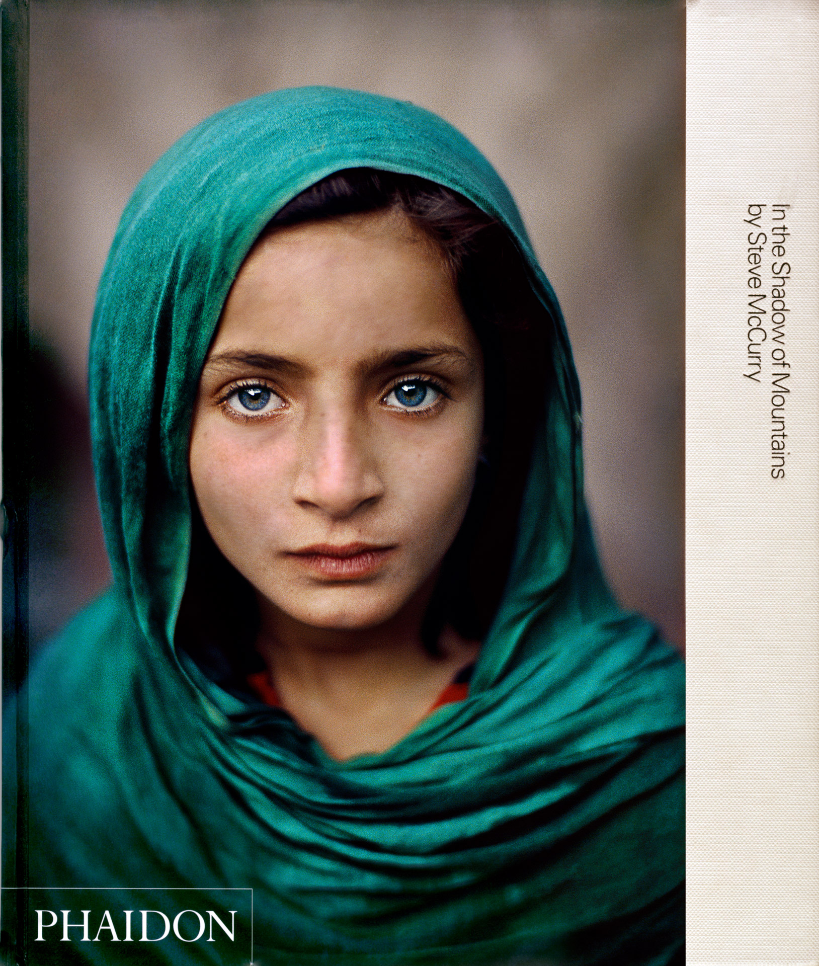 In The Shadow of Mountains McCurry Book