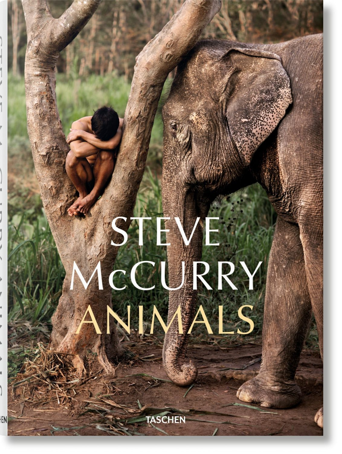 Cover Animals Book