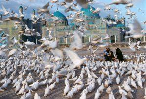 Blue Mosque Mazar E Sharif