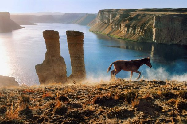 Horse and Two Towers
