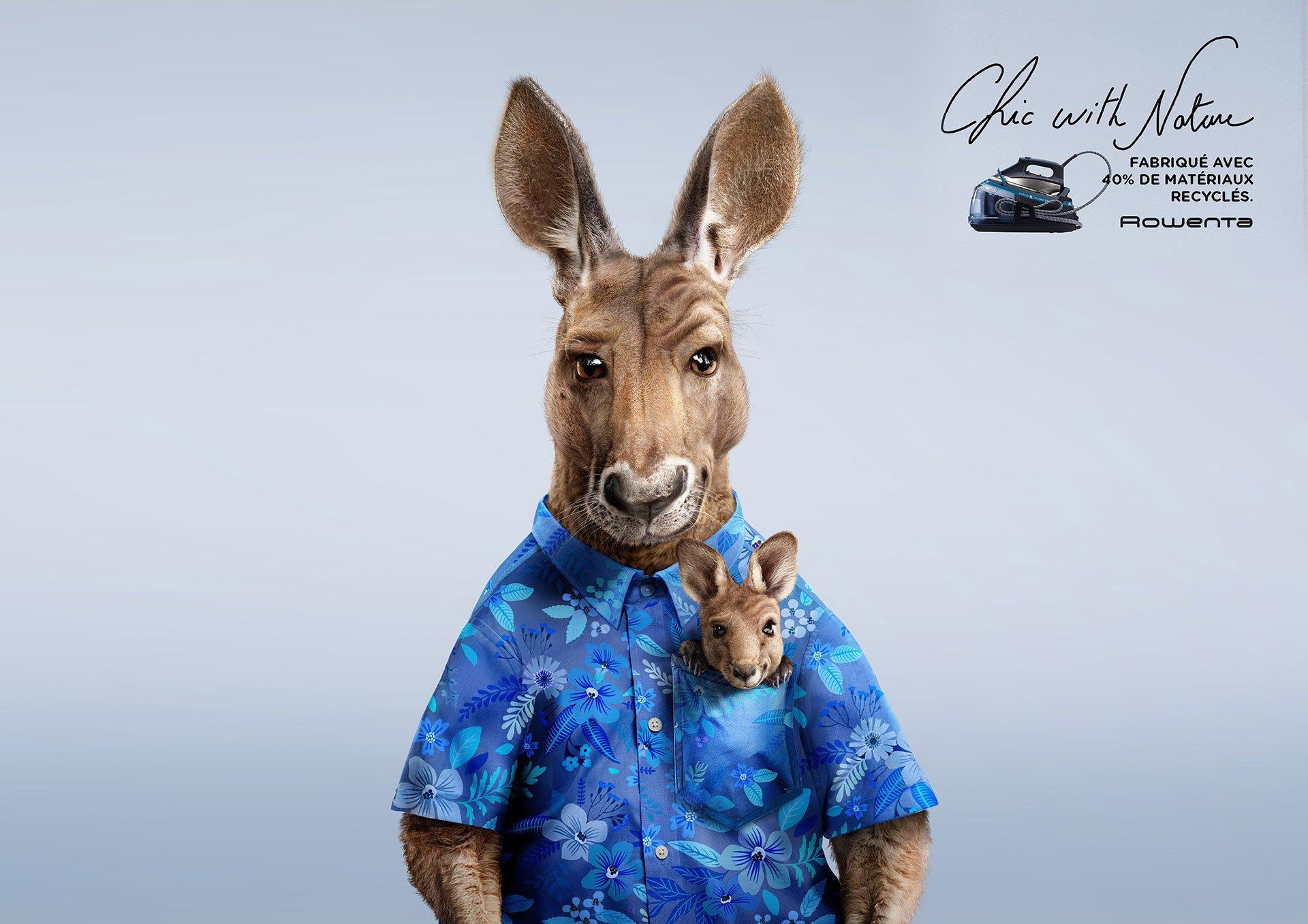 canguro con camicia