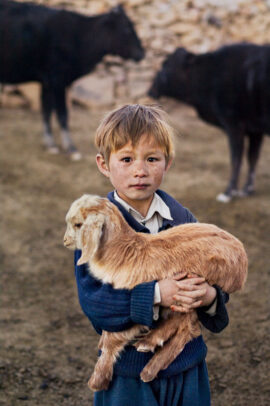 A hazara young boy holds a goat in his arms