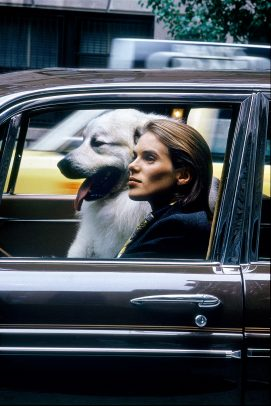 woman and big white dog in the car