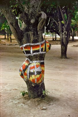 a painted trunk