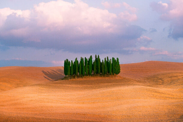 hill with cypress trees in Tuscany country