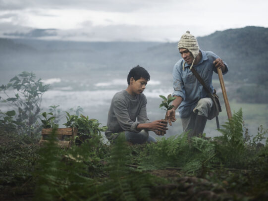 father and son plating in a plantation for Lavazza Calendar 2016 by Joey L.