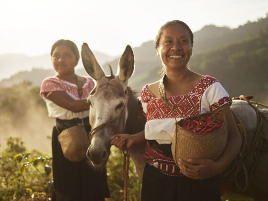 two women in traditional dresses leading a donkey and holding baskets full of chili peppers for Lavazza Calendar 2016 by Joey L