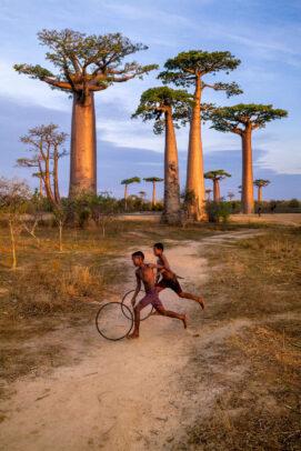 boys playing under baobab in madagascar