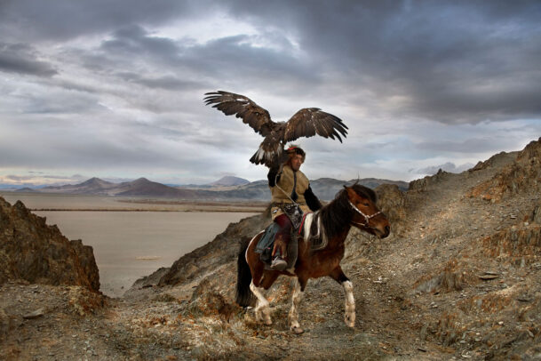 mongolian man riding a horse with a hawk on his arm in the desert