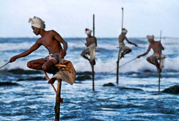 men fishing on sticks