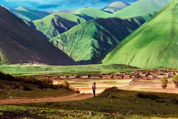 Young boy walks through barley fields near Kandze, Tibet