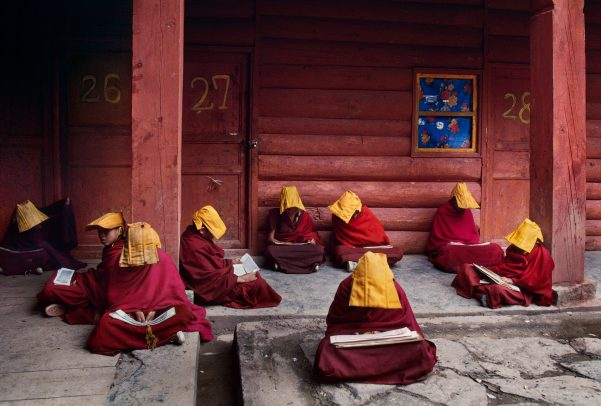 Young monks studying Buddhists scripture