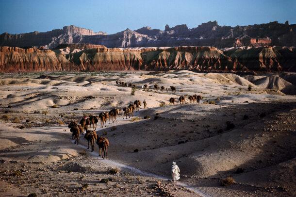 Camel caravan in Afghanistan