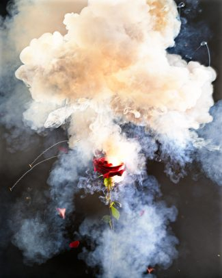 a red rose with smoke