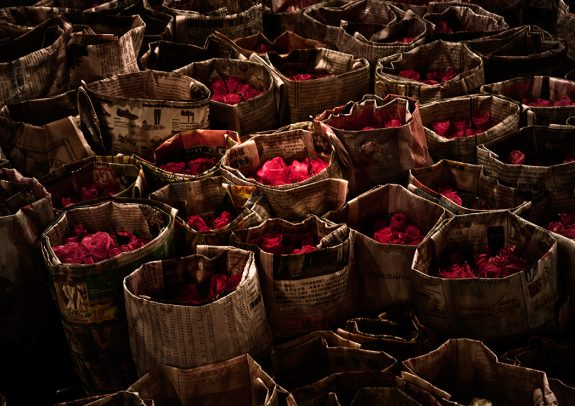 bags mad of full of petals of roses