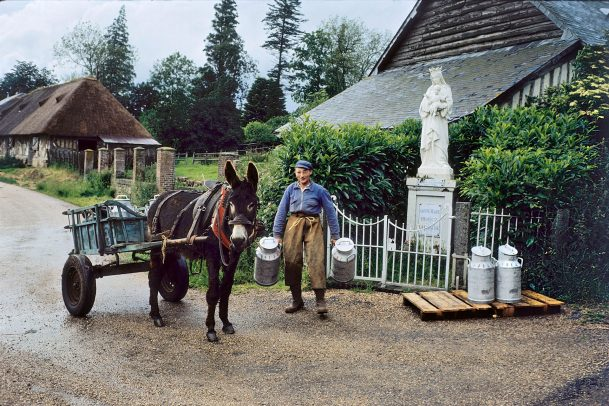 man holding two big cans for milk next to his cart pulled by a donkey and a statue of Mary