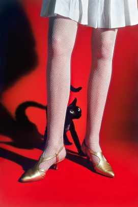 black little cat hiding himself behind the leg of a model on a red background
