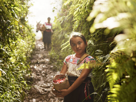 A girl holding a little basket full of chili peppers in a plantation for Lavazza Calendar 2016 by Joey L