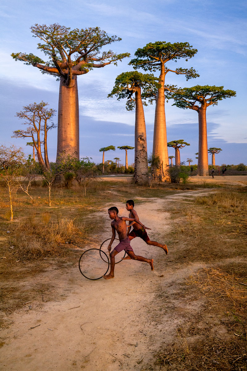 two boys playing in front of the Baobab Avenue, Morondava, Madagascar