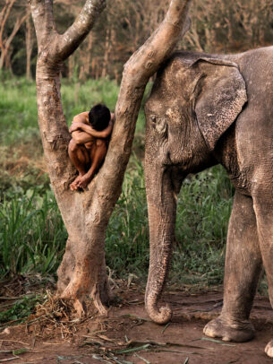 Mahout and His Elephant at a Sanctuary