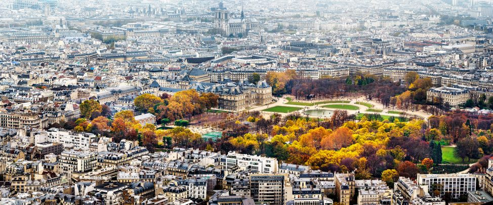 Paris Cityscape with park and Notre Dame