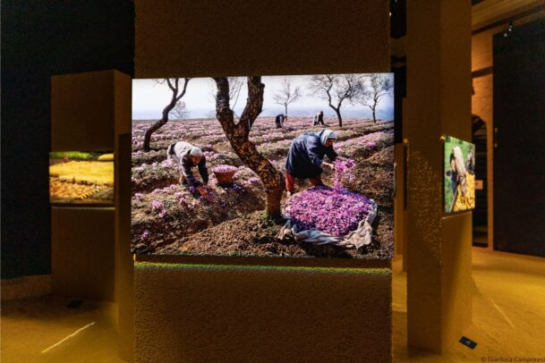 McCurry Cibo Forli exhibition installation