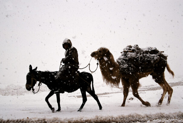 man on a donkey followed by camel in a snowy weather