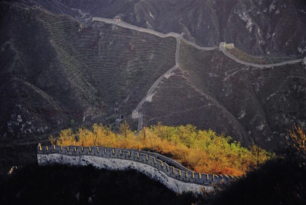 autumn leaves next to the great wall of Badaling