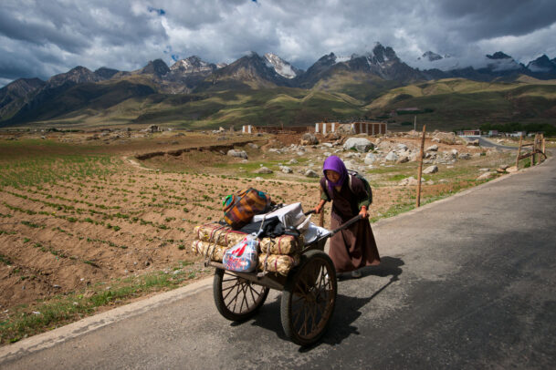 a nomad pushing her cart