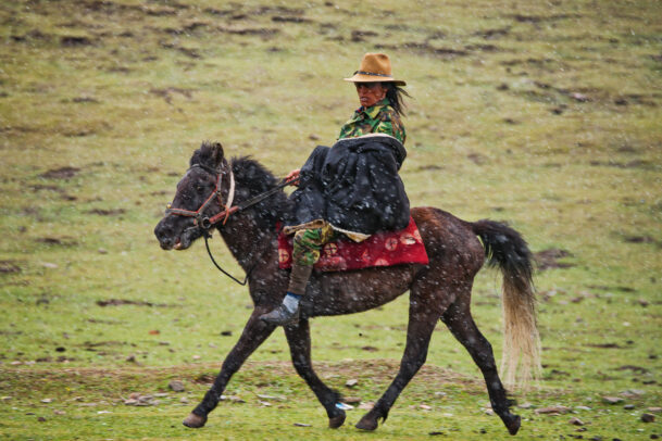 tibetan nomad and his horse