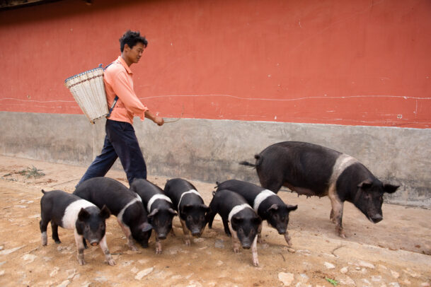 man walking on the street with his sow and family