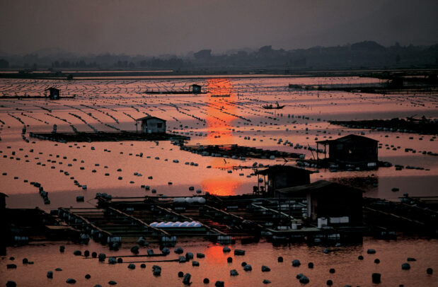 Sunset reflected in oyster beds off Xiamen