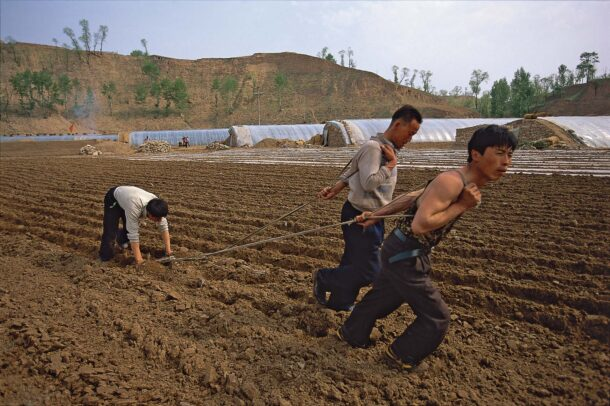 chinese men plowing a field