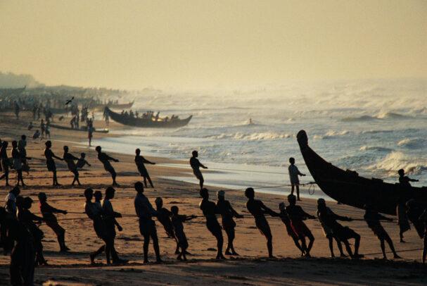 Indian men pull in fishing nets