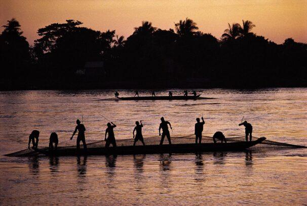 Barrage nets strung across the Tonle Sap Lake