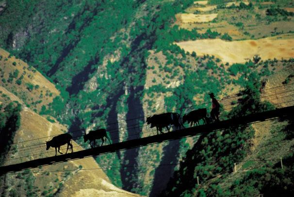 silhouetteof man crossing gorge