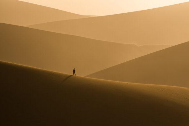 man walking on golden dunes of the desert
