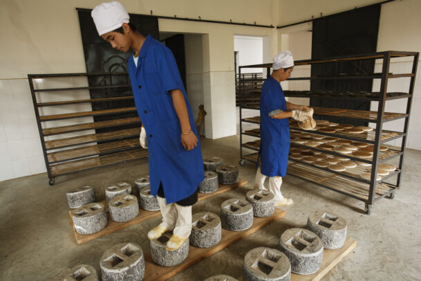 Workers at a tea factory in Yiwu