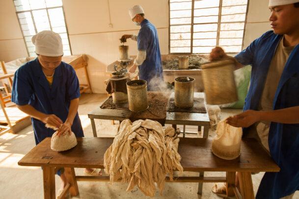men working for puher tea