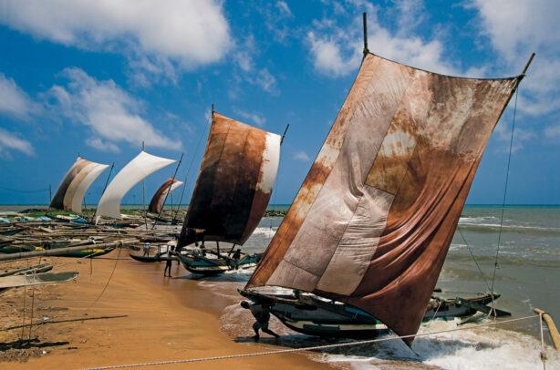 Fishermen and their boats on Negombo Beach in Sri Lanka